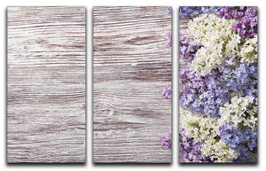 Blossom branch on wooden 3 Split Panel Canvas Print - Canvas Art Rocks - 1