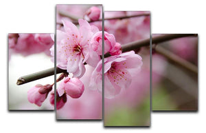 Broken blooming cherry branch 4 Split Panel Canvas  - Canvas Art Rocks - 1