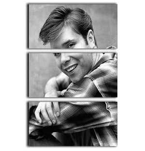 Cliff Richard in 1964 3 Split Panel Canvas Print - Canvas Art Rocks - 1
