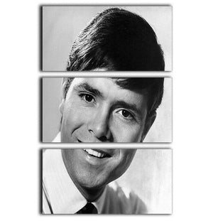 Cliff Richard in 1967 3 Split Panel Canvas Print - Canvas Art Rocks - 1