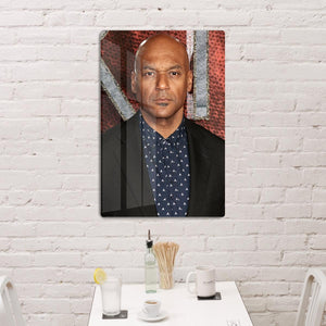 Colin Salmon HD Metal Print
