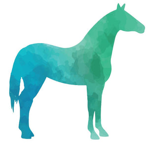 Colourful Horse Silhouette Wall Sticker - Canvas Art Rocks - 2