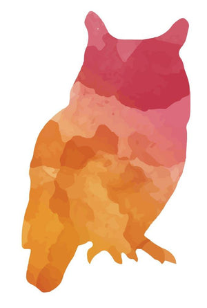 Colourful Owl Silhouette Wall Sticker - Canvas Art Rocks - 2