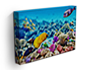Corals and tropical fish Canvas Print or Poster - Canvas Art Rocks - 3