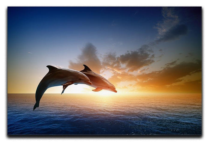 Couple jumping dolphins Canvas Print or Poster