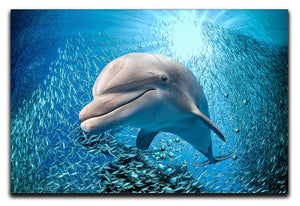 Dolphin underwater on ocean Canvas Print or Poster  - Canvas Art Rocks - 1