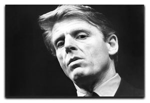 Edward Fox Canvas Print or Poster  - Canvas Art Rocks - 1