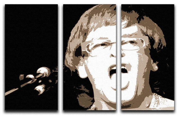 Elton John singing pop art 3 Split Panel Canvas Print