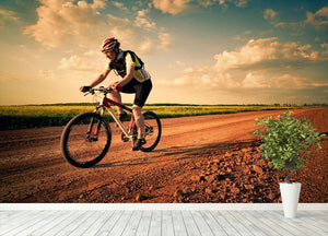 Extreme biking in motion Wall Mural Wallpaper - Canvas Art Rocks - 4