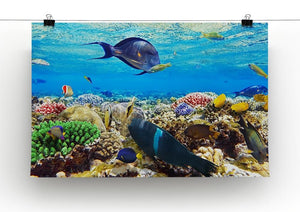 Fish in the Red Sea Canvas Print or Poster - Canvas Art Rocks - 2