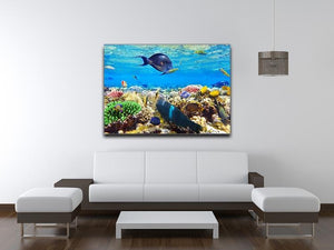 Fish in the Red Sea Canvas Print or Poster - Canvas Art Rocks - 4