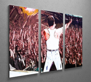 Freddie Mercury at Live Aid 3 Split Panel Canvas Print - Canvas Art Rocks - 2
