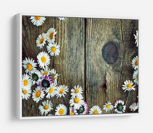 Fresh daisies on wood HD Metal Print