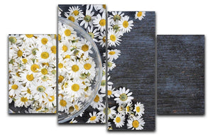 Fresh medicinal roman chamomile flower 4 Split Panel Canvas  - Canvas Art Rocks - 1