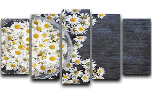 Fresh medicinal roman chamomile flower 5 Split Panel Canvas  - Canvas Art Rocks - 1