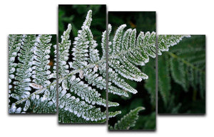 Frosty Fern 4 Split Panel Canvas - Canvas Art Rocks - 1