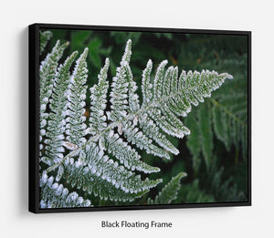 Frosty Fern Floating Frame Canvas - Canvas Art Rocks - 1