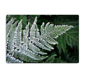 Frosty Fern HD Metal Print - Canvas Art Rocks - 1