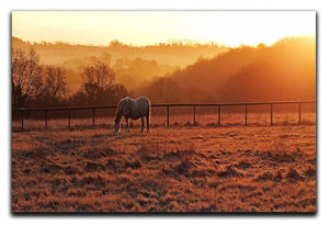 Frosty Morning Canvas Print or Poster - Canvas Art Rocks - 1