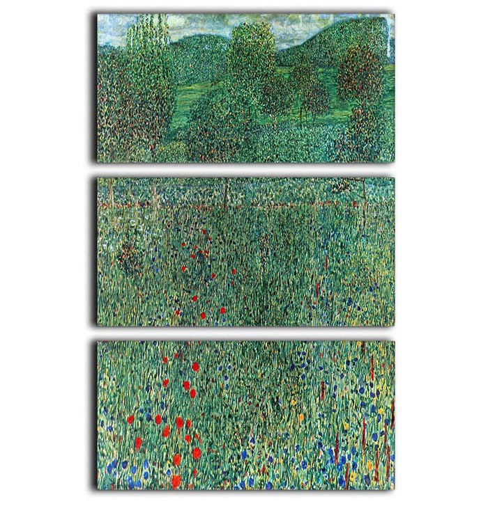 Garden landscape by Klimt 3 Split Panel Canvas Print