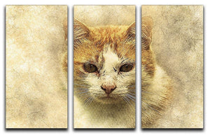 Ginger Cat Painting 3 Split Panel Canvas Print - Canvas Art Rocks - 1