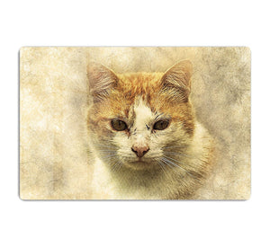 Ginger Cat Painting HD Metal Print
