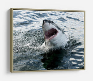 Great white shark HD Metal Print