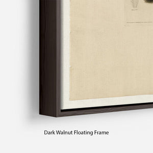 Henslows Bunting by Audubon Floating Frame Canvas - Canvas Art Rocks - 6