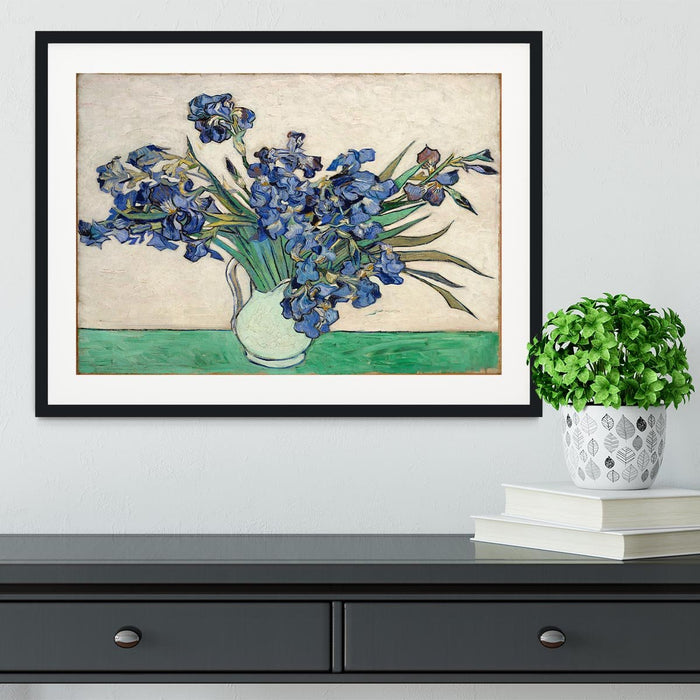Irises in a vase Framed Print