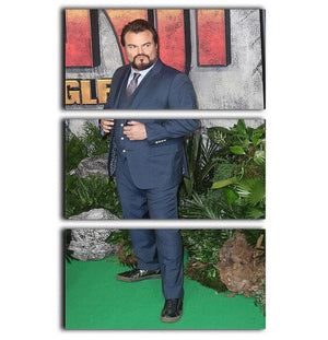 Jack Black 3 Split Panel Canvas Print - Canvas Art Rocks - 1
