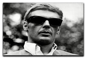 James Fox Canvas Print or Poster  - Canvas Art Rocks - 1