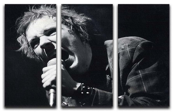 Johnny Rotten sings 3 Split Panel Canvas Print