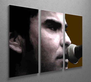 Kelly Jones Stereophonics 3 Split Panel Canvas Print - Canvas Art Rocks - 2