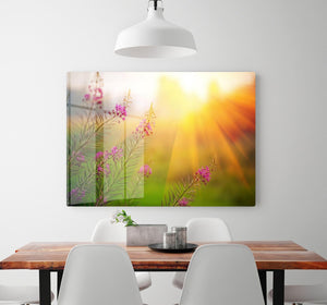 Landscape with Fireweed at sunny summer HD Metal Print