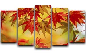 Leaf Patterns 5 Split Panel Canvas - Canvas Art Rocks - 1