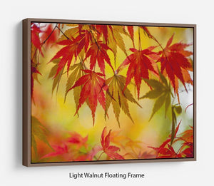 Leaf Patterns Floating Frame Canvas - Canvas Art Rocks 7