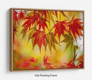 Leaf Patterns Floating Frame Canvas - Canvas Art Rocks - 9