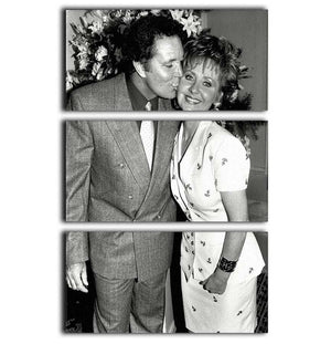 Lulu and Tom Jones 3 Split Panel Canvas Print - Canvas Art Rocks - 1