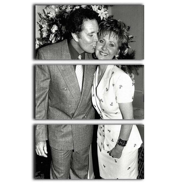 Lulu and Tom Jones 3 Split Panel Canvas Print