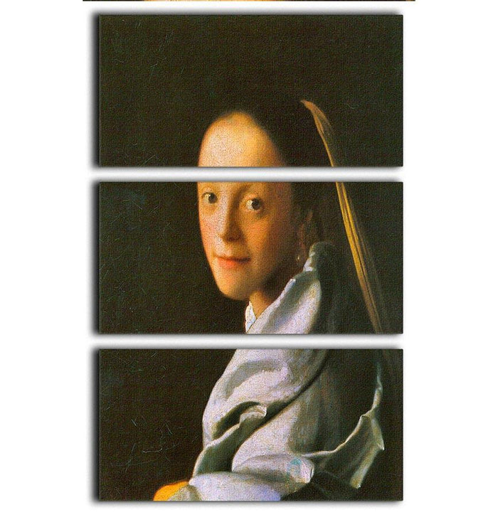 Maid by Vermeer 3 Split Panel Canvas Print