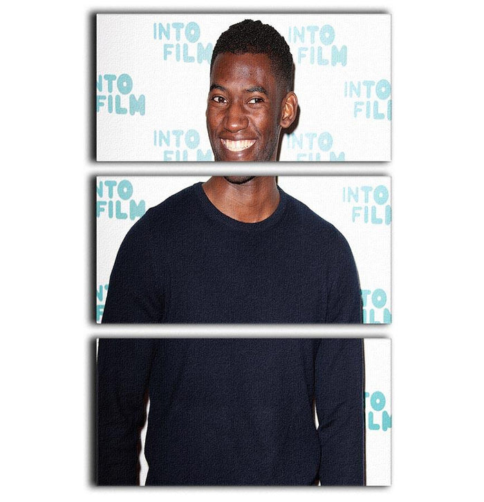 Malachi Kirby 3 Split Panel Canvas Print