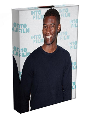 Malachi Kirby Canvas Print or Poster - Canvas Art Rocks - 3