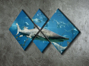 Marine fish underwater 4 Square Multi Panel Canvas  - Canvas Art Rocks - 2