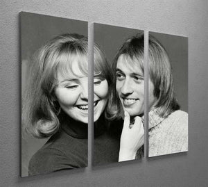 Maurice Gibb with Lulu 3 Split Panel Canvas Print - Canvas Art Rocks - 2