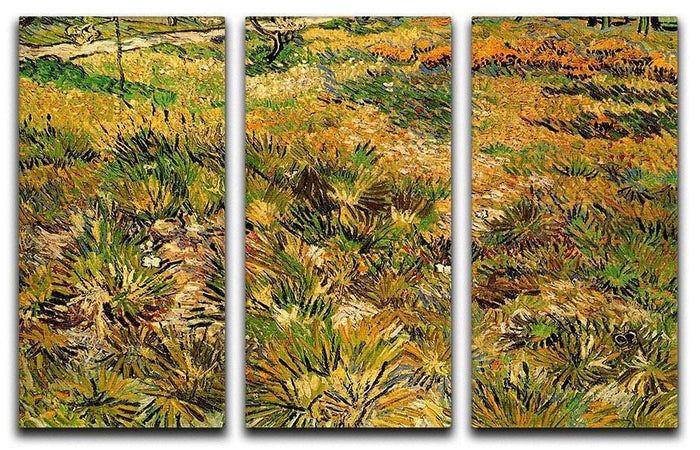 Meadow in the Garden of Saint-Paul Hospital by Van Gogh 3 Split Panel Canvas Print