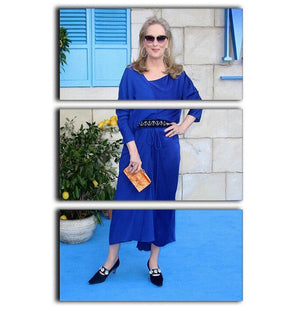 Meryl Streep Mamma Mia 3 Split Panel Canvas Print - Canvas Art Rocks - 1