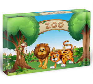 Monkey lion and a tiger at Zoo Acrylic Block - Canvas Art Rocks - 1