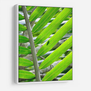 Morning in the forest HD Metal Print