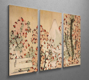 Mount Fuji behind cherry trees and flowers by Hokusai 3 Split Panel Canvas Print - Canvas Art Rocks - 2
