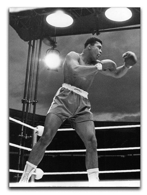 Muhammad Ali 1963 Canvas Print or Poster  - Canvas Art Rocks - 1